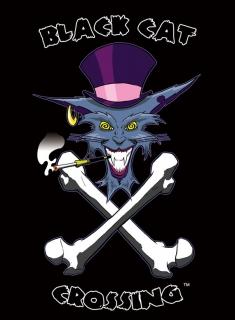 Client: Black Cat Crossing ~ Cat Cave Productions - Logo - Pencil & Ink Illustration + Digital Color & Text - 8/2009 ~ Chicago, IL